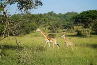 Bezoek aan een project in Oeganda op schoolreis